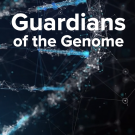 Guardians of the Genome